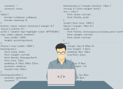 vector image of programmer